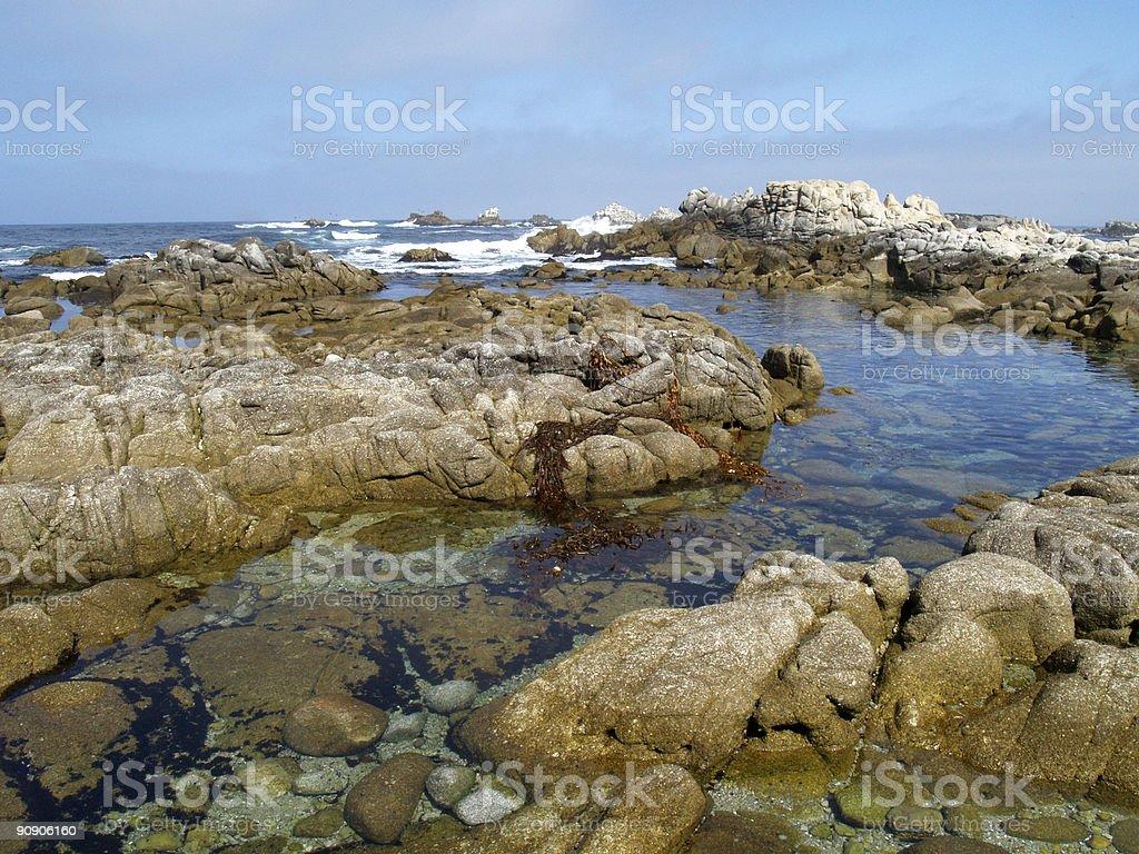 Coastline. 17 mile drive stock photo