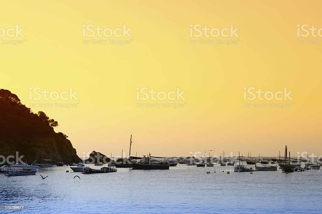 coastline at dawn royalty-free stock photo