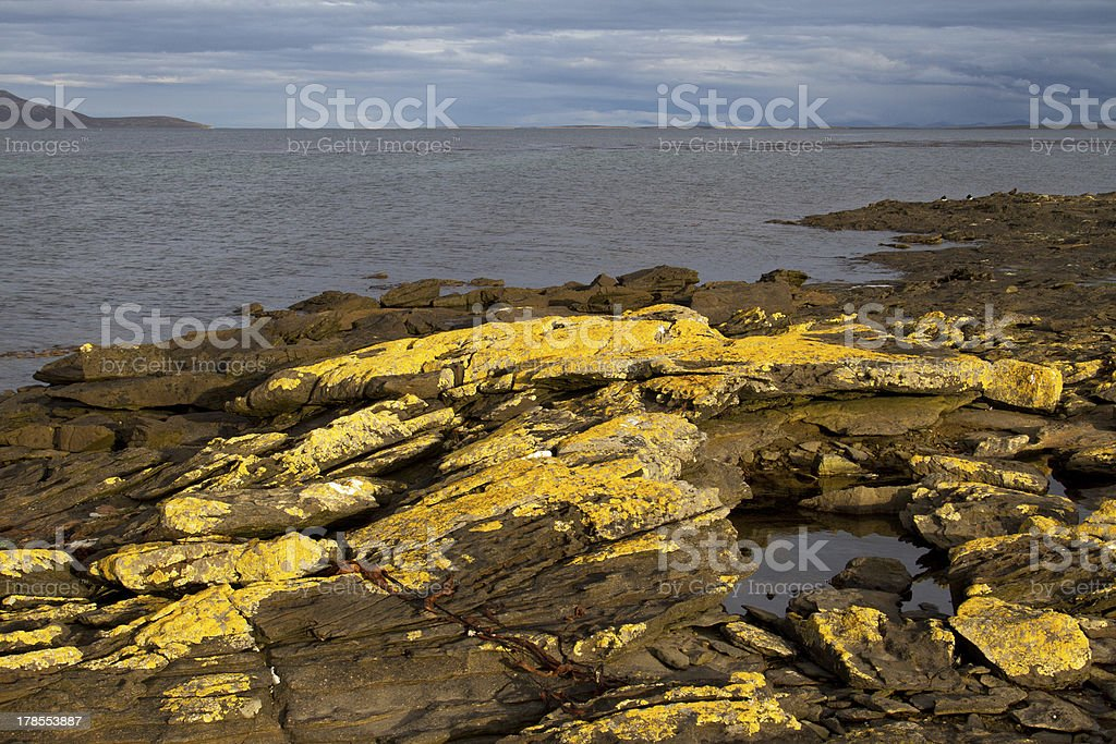 Coastline Falkland Islands royalty-free stock photo