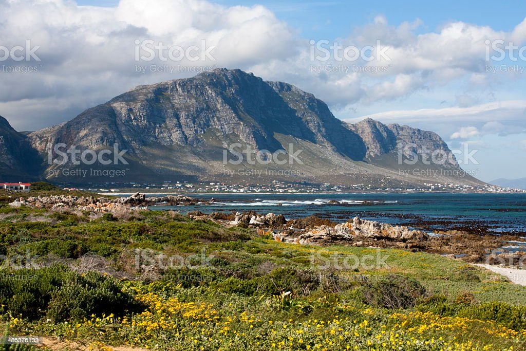 Coastline, Hermanus, South Africa stock photo
