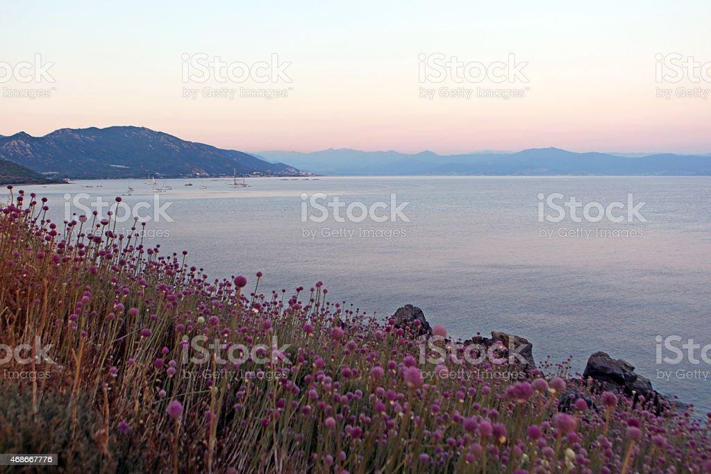 Coastline of  Sanguinaires Islands Archipelago near Ajaccio in Corsica France stock photo