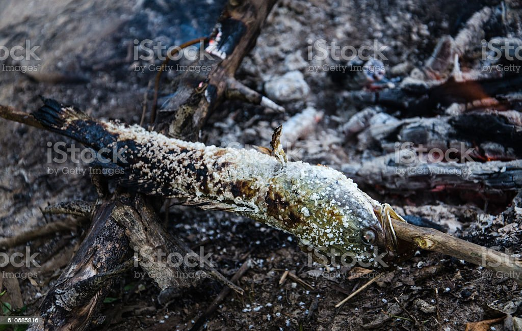 coating, food, Grill snakehead fish with salt on fire stock photo
