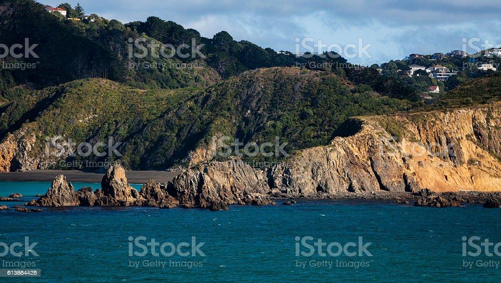Coatline of Cook Strait around Wellington, New Zealand stock photo