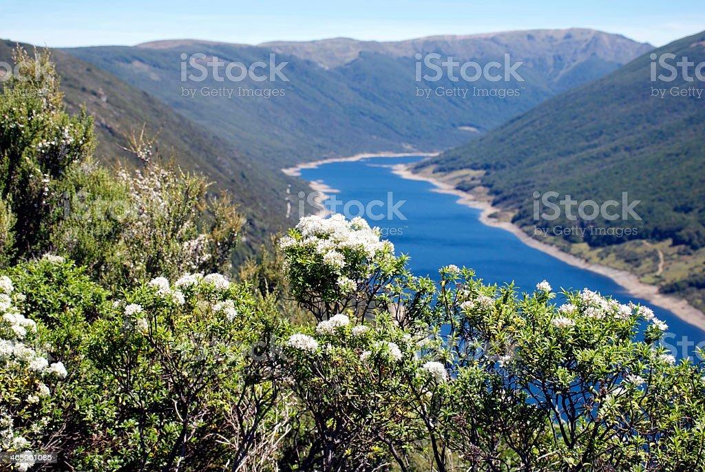 Cobb Valley, Kahurangi National Park, New Zealand stock photo
