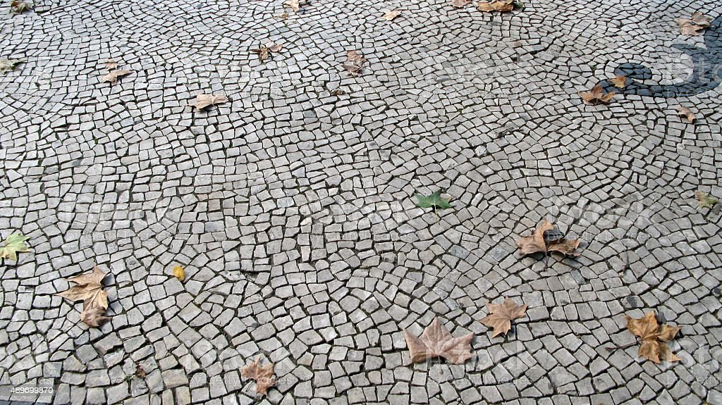 Cobble stone road with autumn leaves royalty-free stock photo