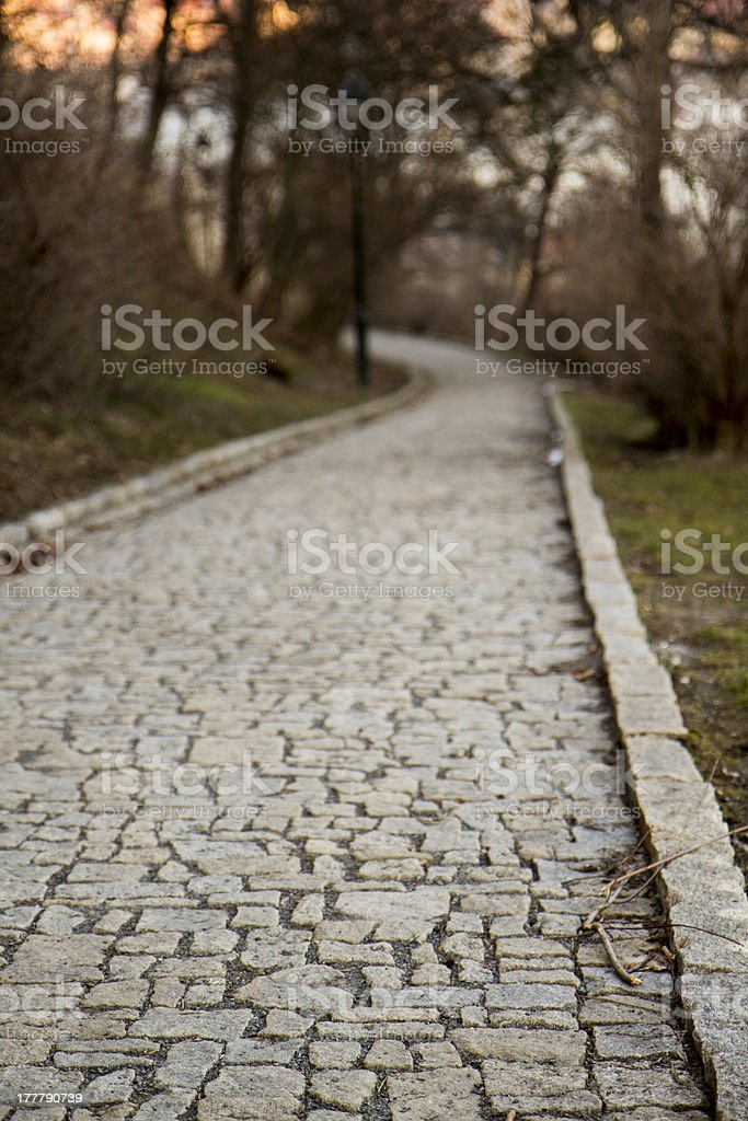Cobbled Path royalty-free stock photo
