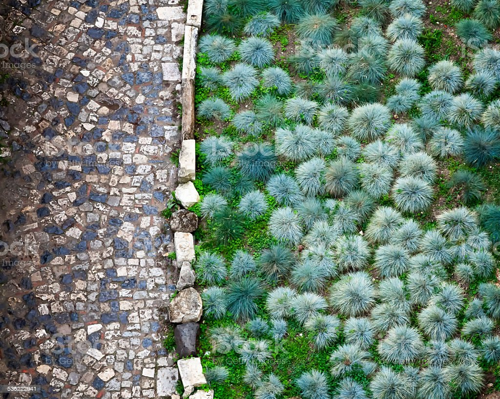 Cobbled Road and Green Plants in San Giorgio Fortress stock photo