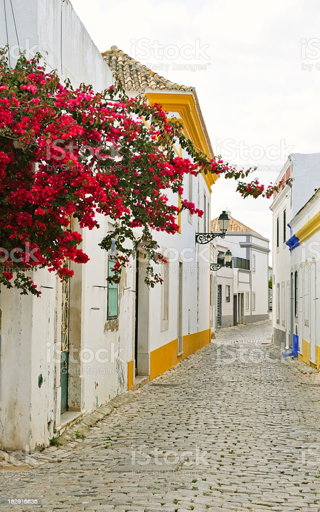 Cobbled street with bougainvillea stock photo