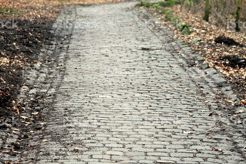 Cobbled Track going through woodland, West Yorkshire, UK stock photo