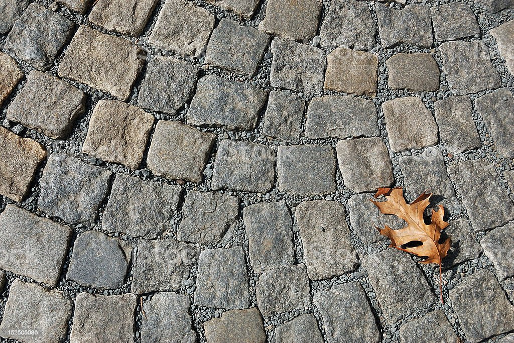 Cobblestone pavement with dried oak leaf royalty-free stock photo