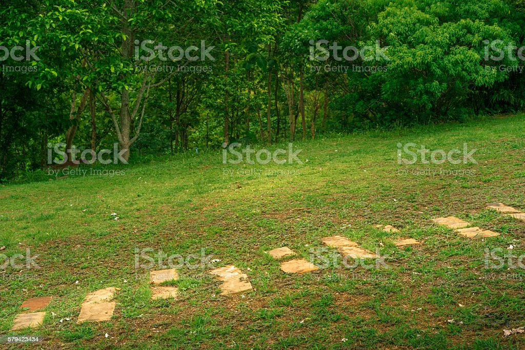 Cobblestone walkway in grass field and forest photo libre de droits