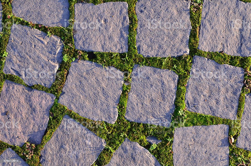 Cobblestone with moss stock photo