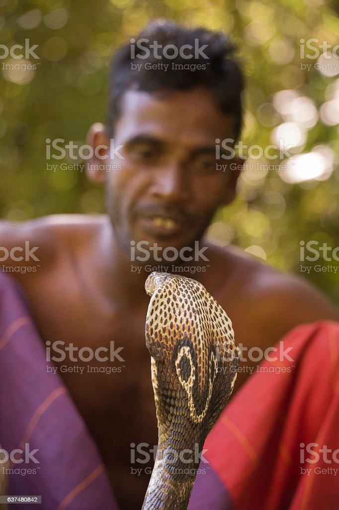 Cobra and Snake Charmer stock photo