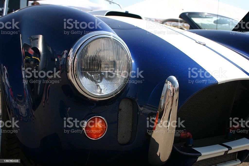 Cobra front royalty-free stock photo