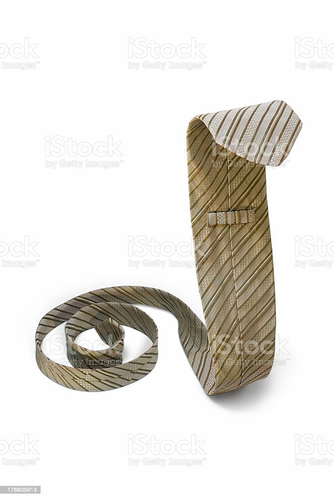 Cobra Necktie royalty-free stock photo