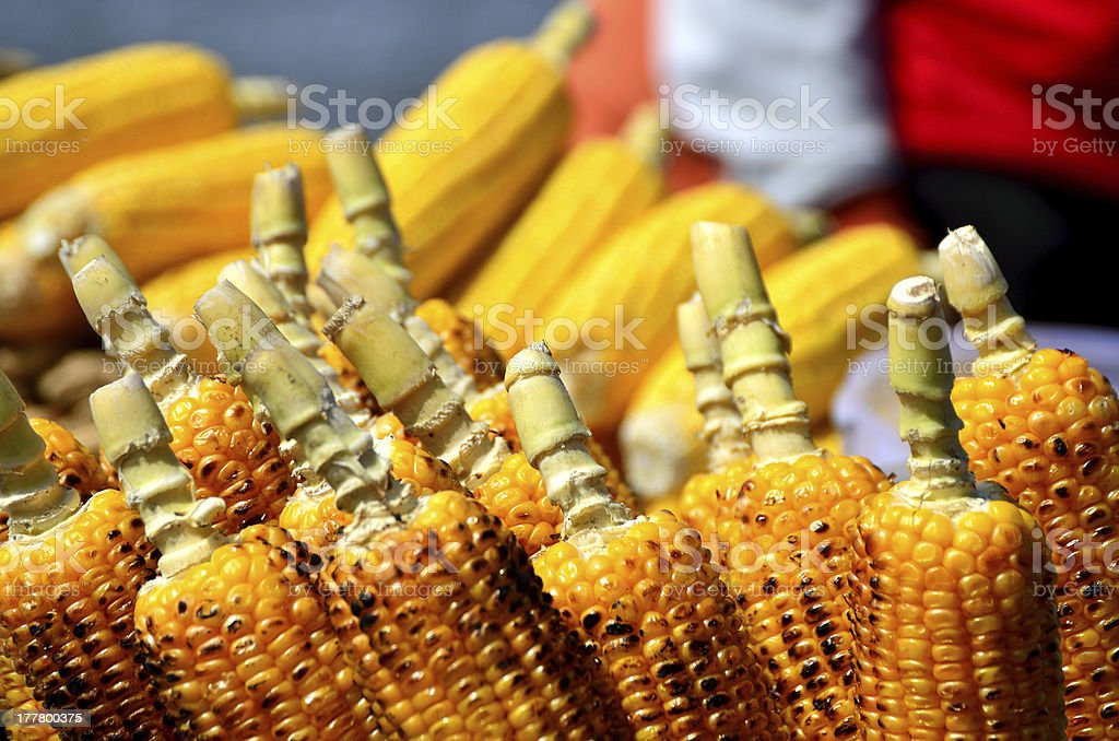cobs for sale royalty-free stock photo
