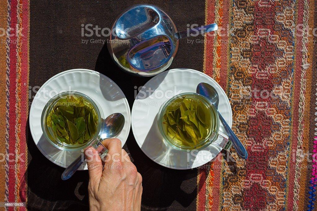 Coca leaves tea known as 'Mate de Coca' stock photo