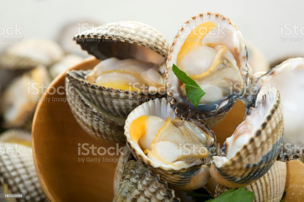 cockles royalty-free stock photo