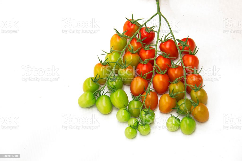 cocktail tomatoes on white background stock photo
