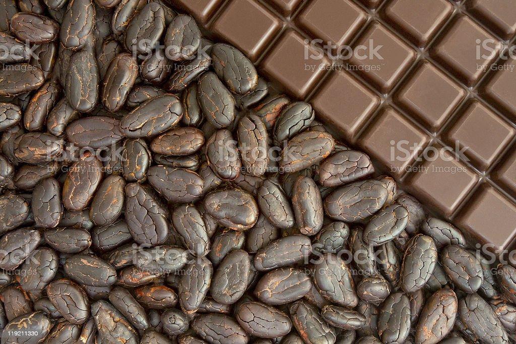 Cocoa and chocolate stock photo