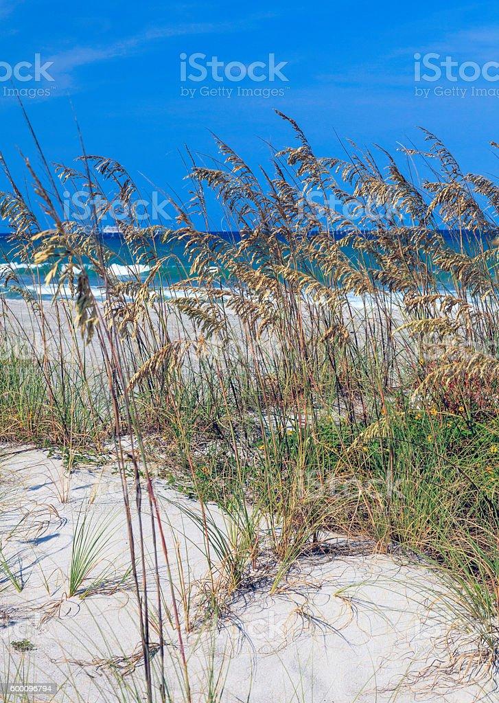Cocoa Beach Scene stock photo