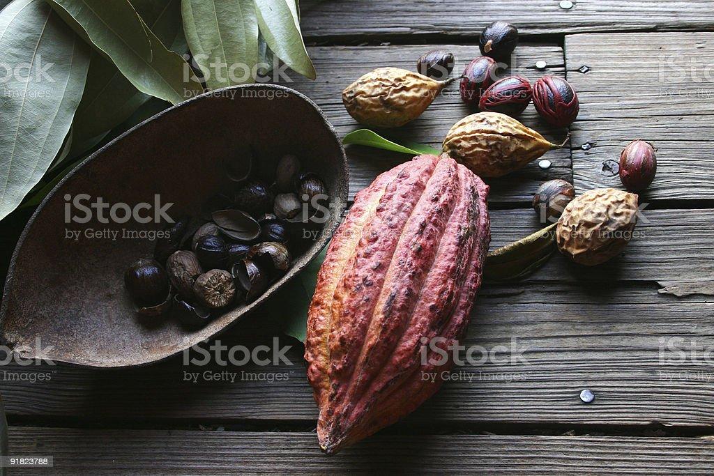 Cocoa bean and nutmeg royalty-free stock photo
