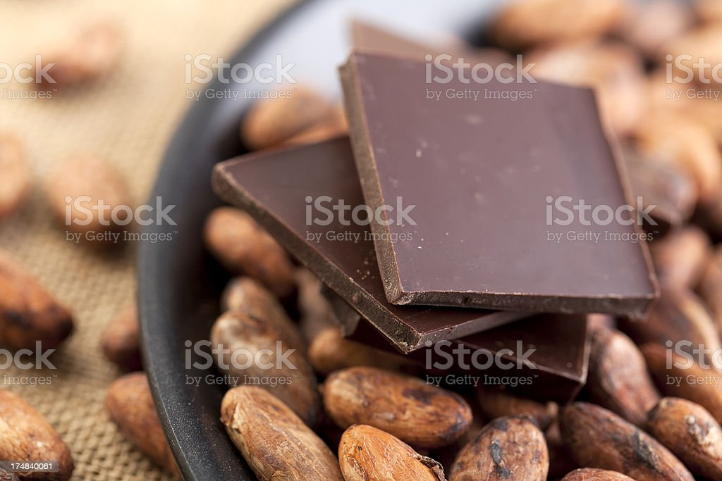 Cocoa Bean in Pan with Chocolate royalty-free stock photo