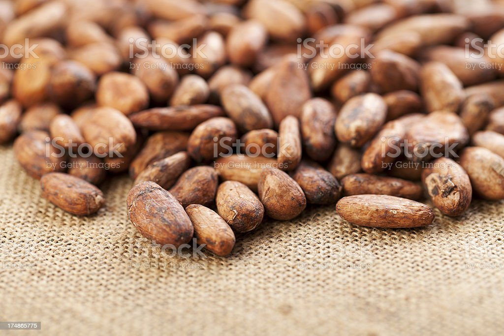 Cocoa Bean Overflowing royalty-free stock photo
