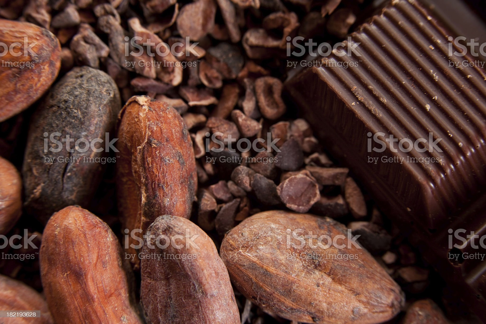Cocoa beans and chocolate bar royalty-free stock photo