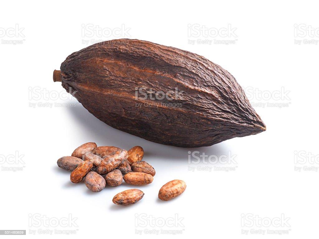 Cocoa Beans and Cocoa Pod stock photo