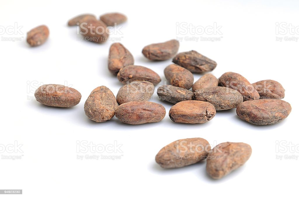 Cocoa beans on white background stock photo