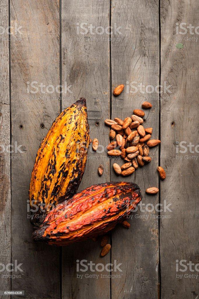 Cocoa fruit, chocolate delightment. stock photo