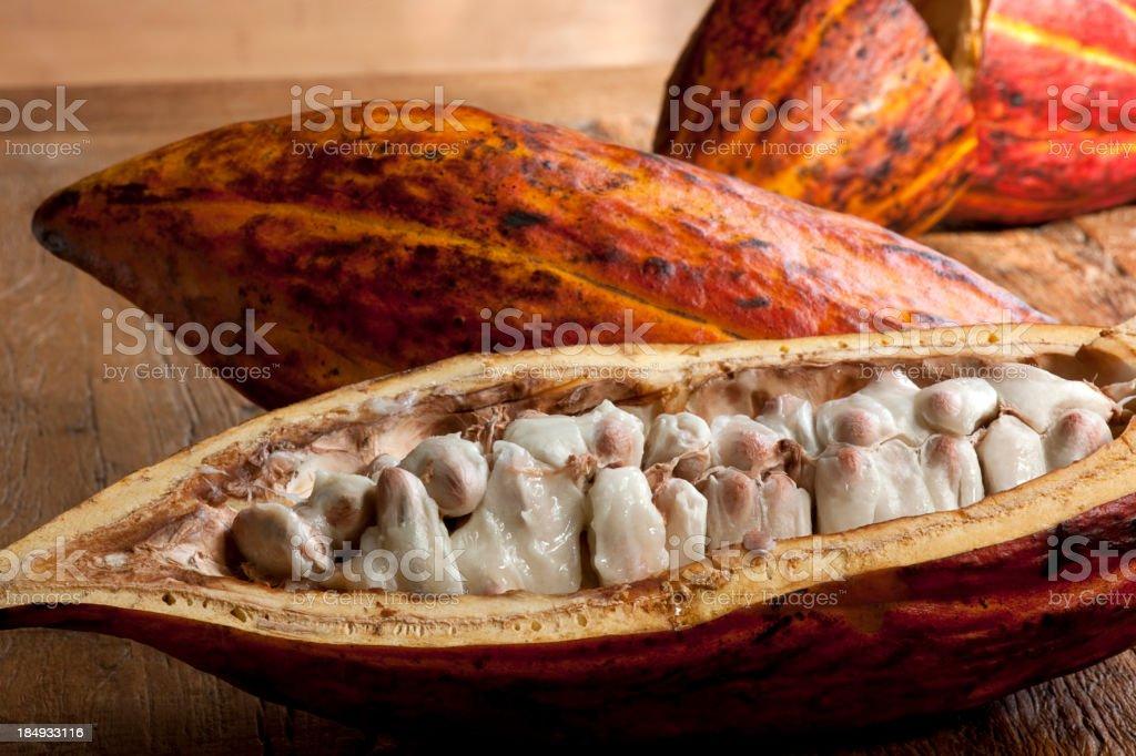 Cocoa fruit - Foodstuff. royalty-free stock photo