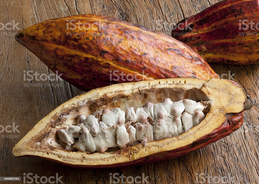Cocoa fruit - Foodstuff stock photo