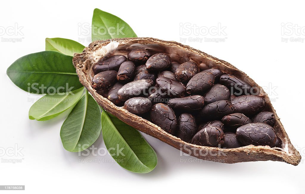 Cocoa pod stock photo