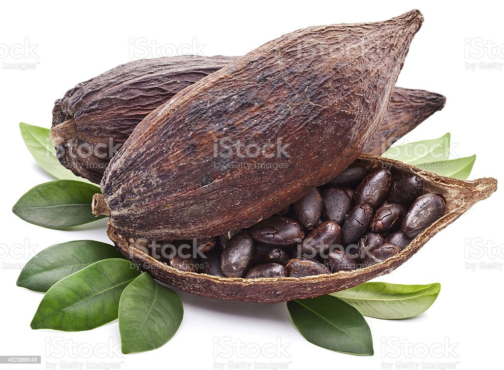 Cocoa pod. stock photo