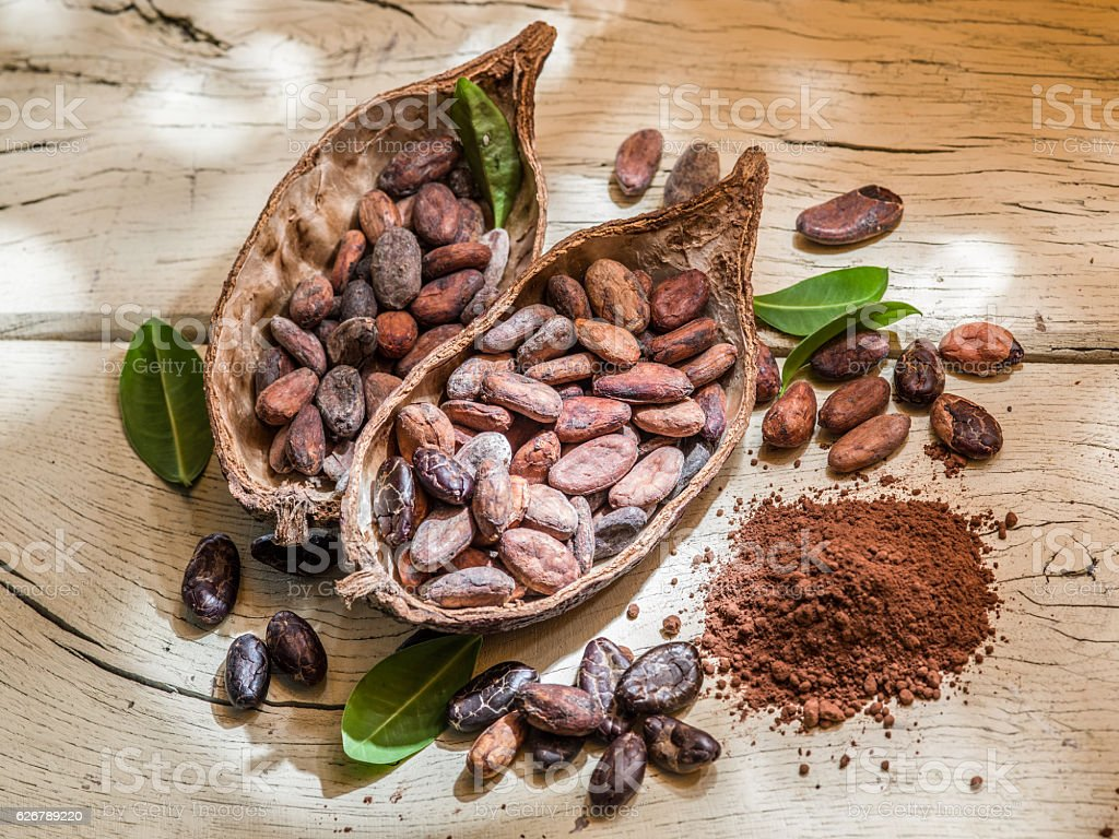 Cocoa powder and cocoa beans on the wooden table. stock photo