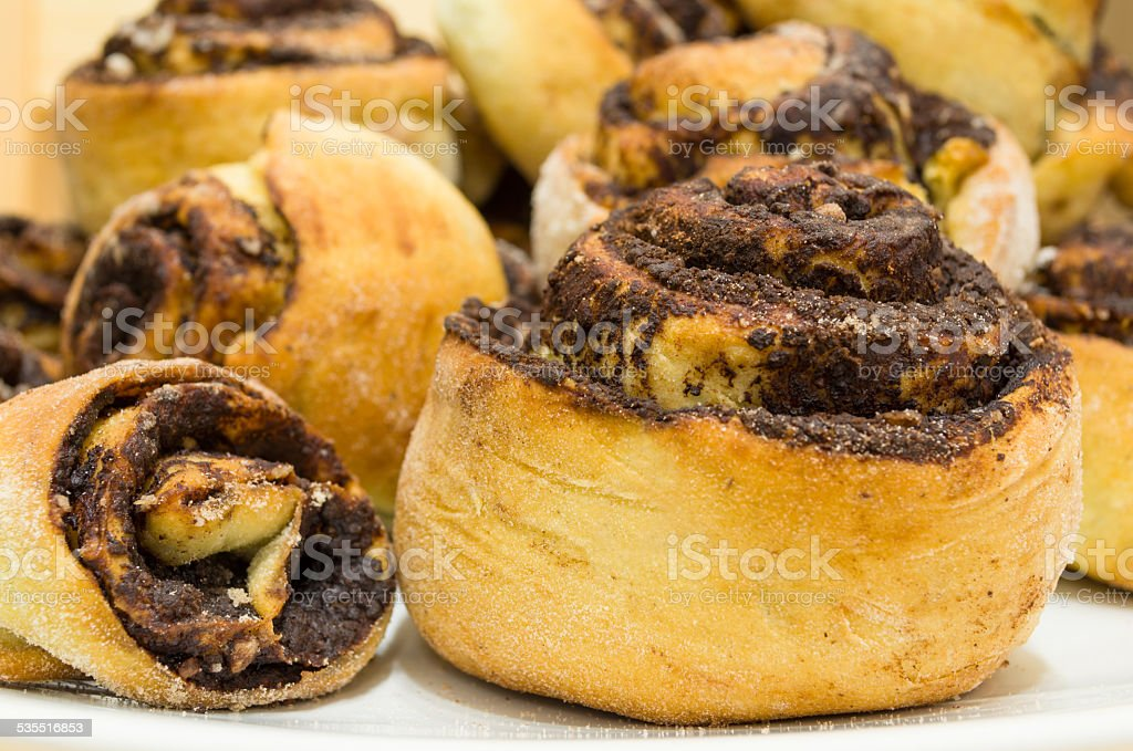 Cocoa Snails Closeup stock photo