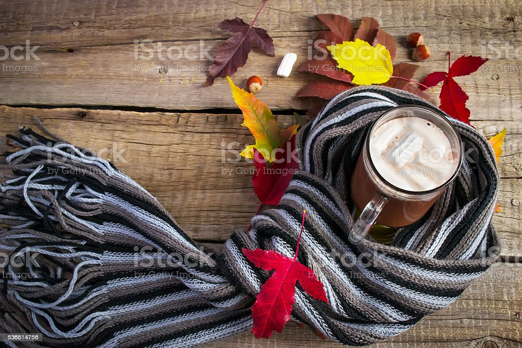 Cocoa with marshmallows, a striped scarf and bright autumn leave stock photo