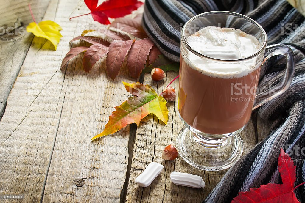 Cocoa with marshmallows, scarf and autumn leaves, with space for stock photo