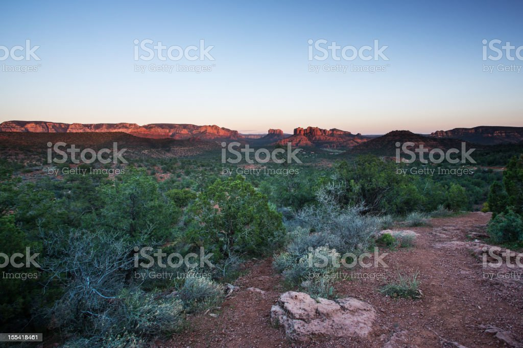 Coconino National Forest royalty-free stock photo