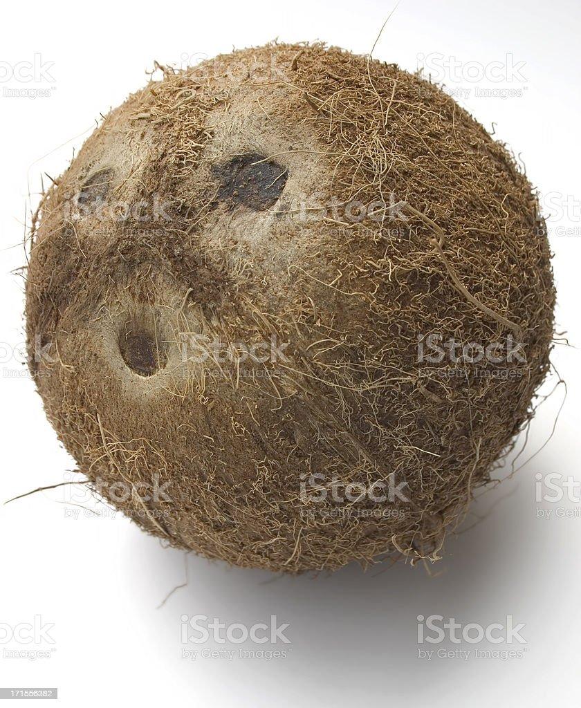 Coconut 02 royalty-free stock photo