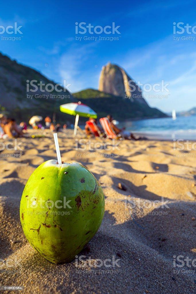 Coconut and beach in Rio de Janeiro stock photo