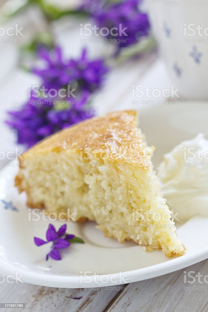 Coconut and lemon cake stock photo