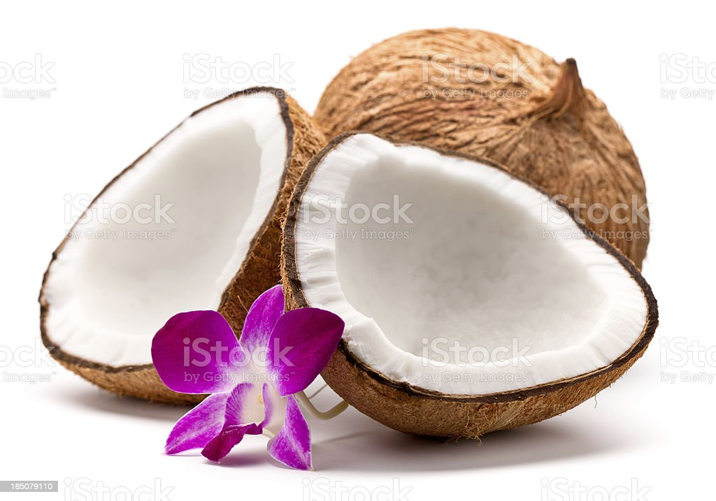 Coconut and orchid stock photo