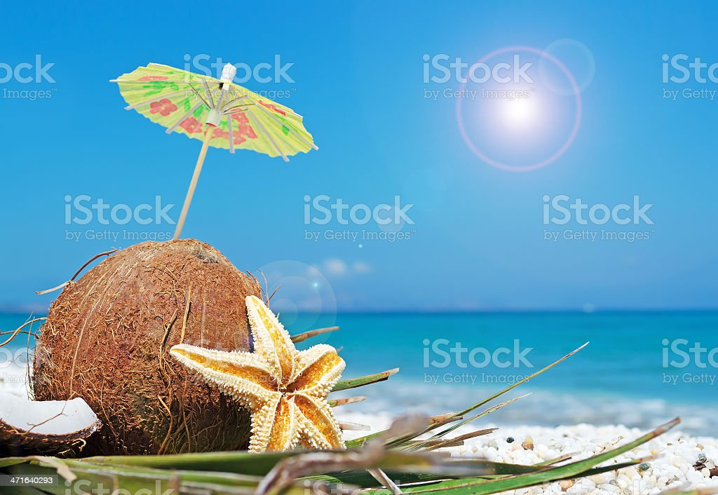 coconut and umbrella royalty-free stock photo