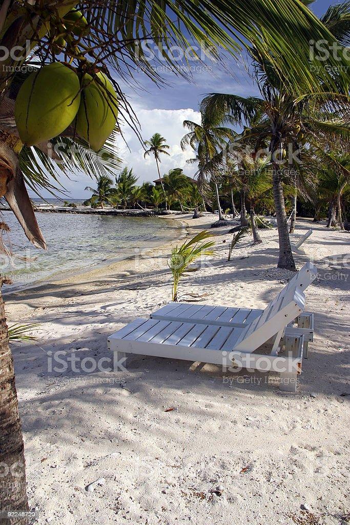 Chaises de noix de coco photo libre de droits