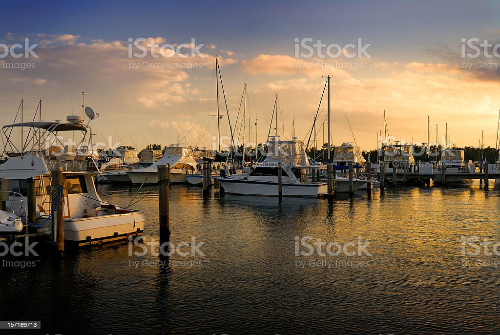 coconut grove marina royalty-free stock photo