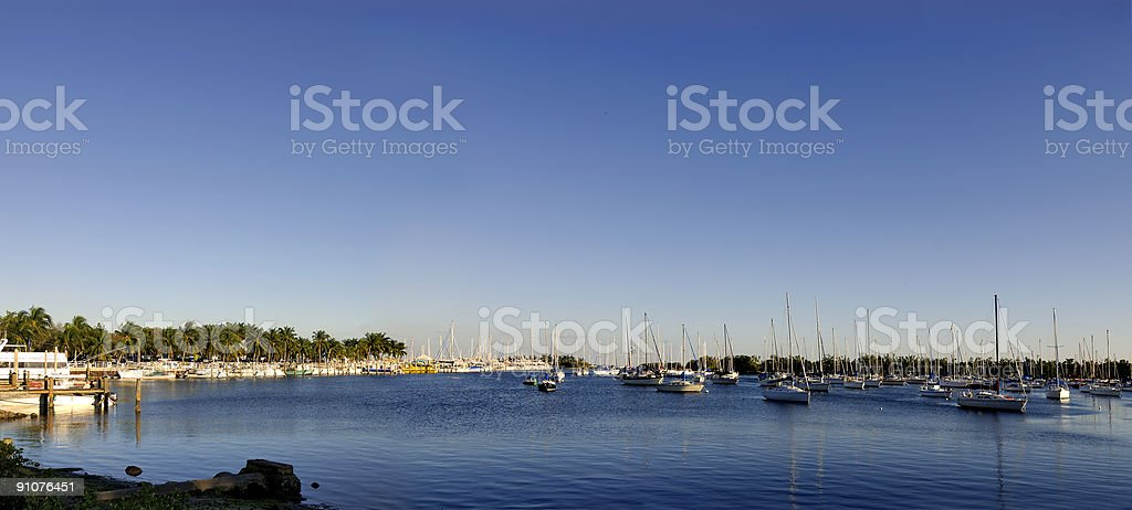 coconut grove marina royalty-free stock photo