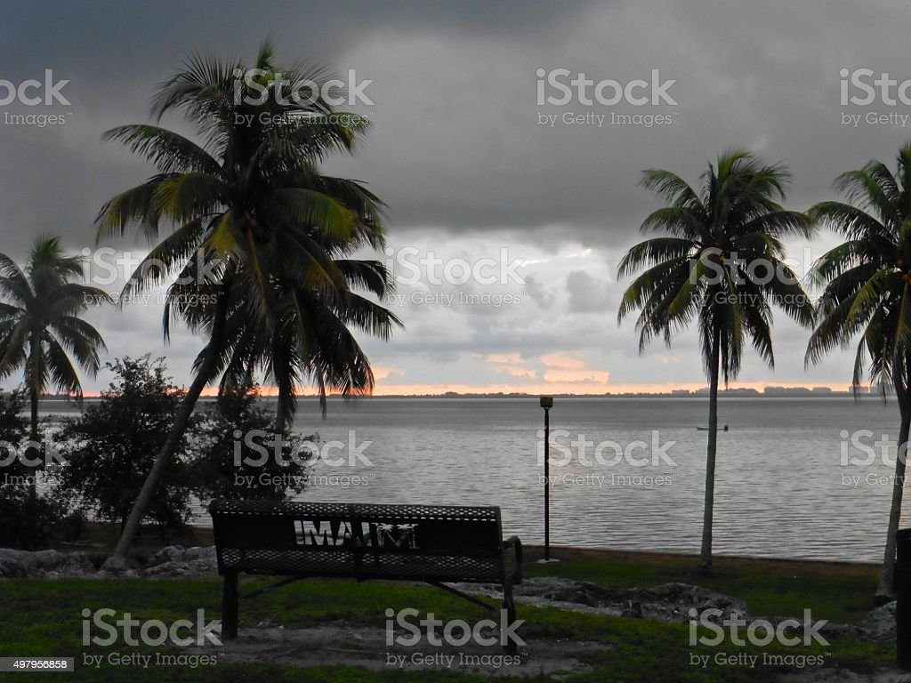 Coconut Grove park stock photo
